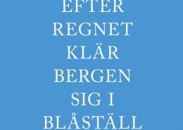 Shop_Efter-regnet-Gustav-Öberg-cover